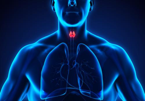 Hipertiroidism: cauze, diagnostic, tratament