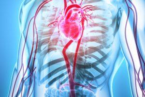 boala sistemului cardiovascular și articulațiilor)
