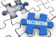 Vaccinarea in timpul calatoriilor