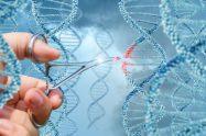 CRISPR-Cas 9: noua era a genomicii