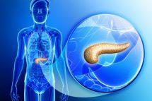 Fiziologia pancreasului