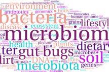 Influența microbiotei asupra bolii Crohn
