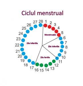 scădere în greutate menstruație modalități de a pierde grăsimea din șolduri